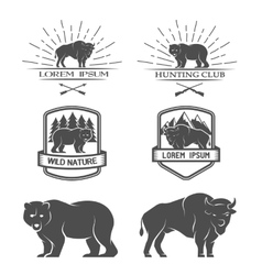Bison and bear posters labels emblem vector