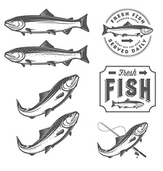 Vintage fresh fish salmon embles design elements vector