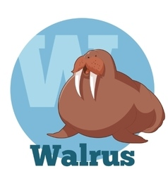 Abc cartoon walrus vector