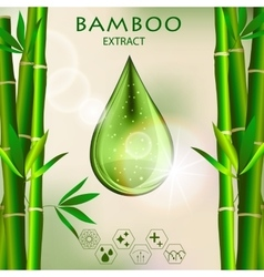 Bamboo oil serum essence 3d droplet with branch vector
