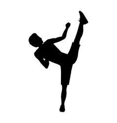 Silhouette man martial arts high kick vector
