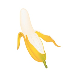 Open ripe asian banana on white background vector