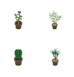 Isometric houseplant set of houseplant flower vector
