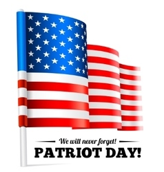 Patriot Day September 11 waving flag vector image