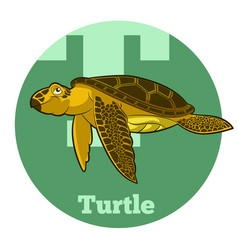 abc cartoon turtle vector image