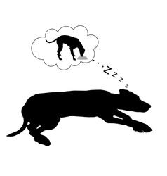 Dog dreams of feeding vector image vector image
