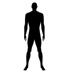 naked standing man vector image vector image