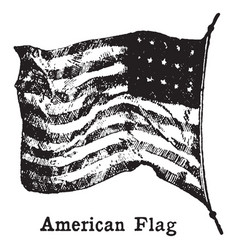 Picture of old american flag on a flag pole vector