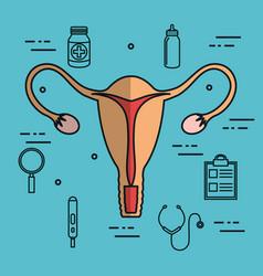 Uterus fertilization pregnancy set collection vector
