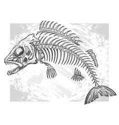 fishbone drawing vector image