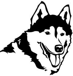 Acg00064 siberian husky02 vector
