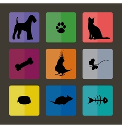 Veterinary icons with pets vector