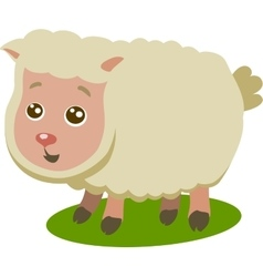Baby sheep isolated vector