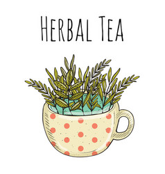 card design with hand drawn tea vector image vector image