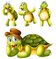 Four playful turtles vector image