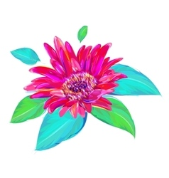 The cute gerbera on white background vector