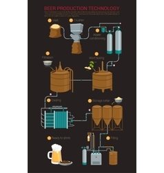 Beer production process infographic vector image