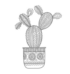 cactus succulent black and white vector image vector image