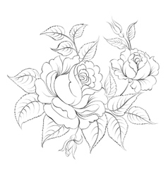 Single black rose ink painted vector