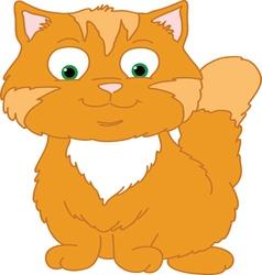 Orange Kitten vector image