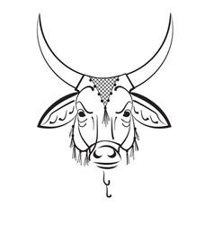 Indian sacred cow zebu vector image