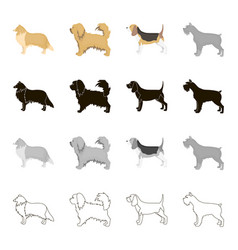 Pointer dog collie scottish shepherd riesen vector