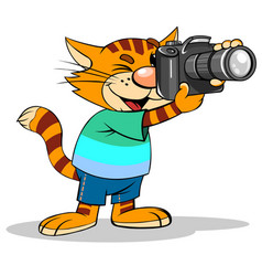 Cartoon red stripped cat vector