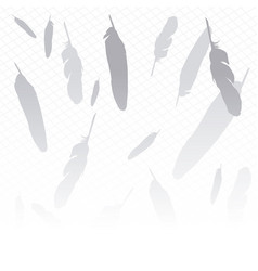 Background feathers in gray and white vector