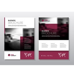 Business Brochure design Annual report temp vector image vector image