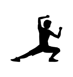 Silhouette man martial arts kick down vector