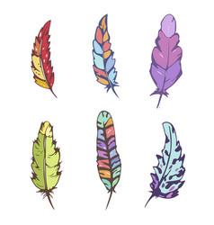 Decorative feather set vector