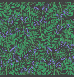 Elegant floral seamless pattern with licorice vector