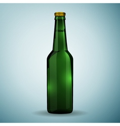 Glass beer green bottle icon isolated on blue vector