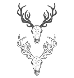 The skull of a deer The two versions vector image