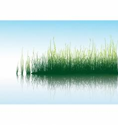 Grass with water vector