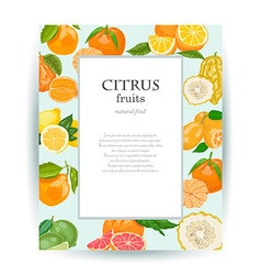 Card with citrus fruits and place for your text vector