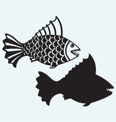 Fish piranha vector