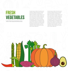 Fresh Vegetables Concept vector image vector image