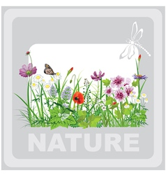 Green grass and flowers landscape natural vector image