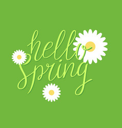 hello spring modern hand drawn lettering vector image