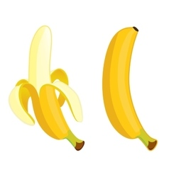 Yellow banana on a white background vector