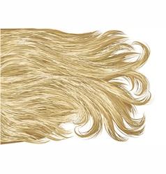blonde hair vector image