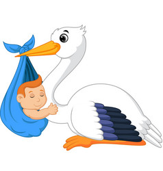cartoon stork carrying cute baby vector image