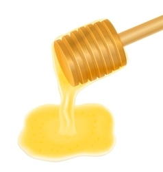 Honey dripping from wooden honey dipper vector image