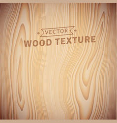 background texture of realistic natural wood vector image