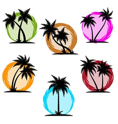 Palm silhouette color set vector image
