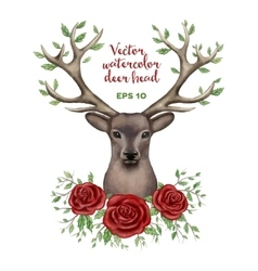 watercolor of deer head vector image