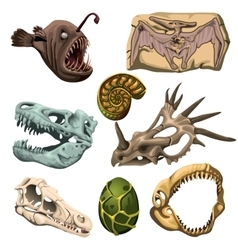 Ancient fossil animals fish and egg vector