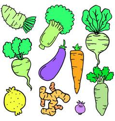 fresh vegetable set of doodles vector image