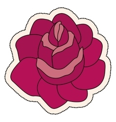 Isolated rose flower design vector